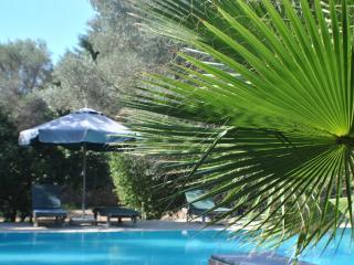 Villa Ekrem Farm House 792, Bitez