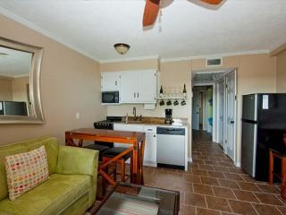 Seaside Villa 327 - 1 Bedroom 1 Bathroom Oceanside Flat Hilton Head, SC