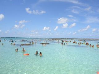 Ap p/ temporada na mais bonita praia de Maceió, Maceio