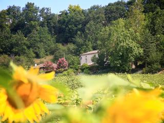 Views across the sunflower field towards Reillou