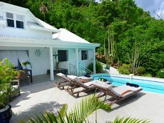 Mahogany at Flamands, St. Barth - Ocean View, Walk To Beach, Private, Colombier