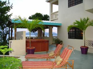 Rich Ocean Views, Pool/Spa, Tropical, Zen, Comfort, St. Thomas