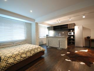 Spacious open concept loft, Fully furnished, Includes cleaning.  / Jongno / SNUH