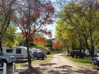 Valley View Caravan Park, Whitfield
