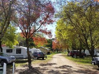 Valley View Caravan Park
