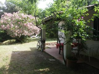 five minute walk from the beach Elba Procchio