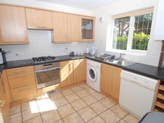 Your Kitchen with Electric oven and grill. Fridge and separate freezer. Dishwasher, Washing machine.