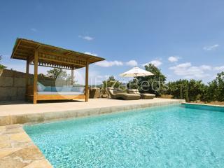 Calm Oasis Villa