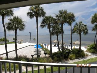 Beachfront Beautiful Modern Suite 217, Tampa