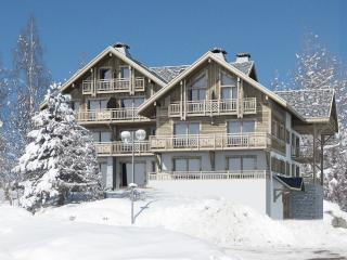 Brand new two bedroom ski apartment, Les Deux-Alpes