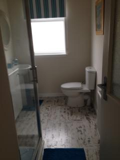 Shower room with low access shower tray, toilet and sink and storage unit.