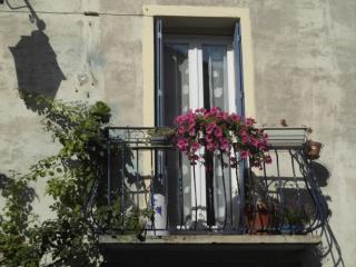 la maison des chats, Saint-Thibery