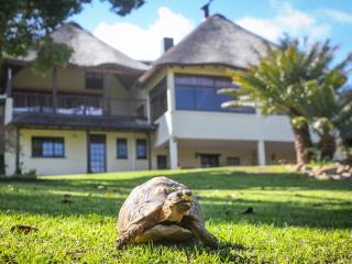 Winelands Villa Guesthouse and Cottages, Somerset West
