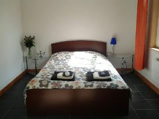 1 room apartment with kitchenette, Eindhoven
