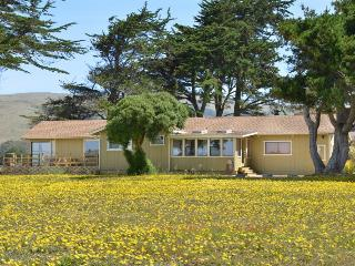 Seaside Escape – new, Bodega Bay