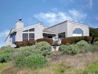 Webb, Bodega Bay