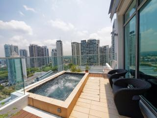 2 bedroomPenthouse Newton Orchard, Singapore