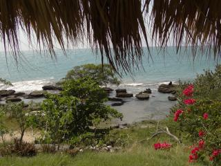 Sea View /Beach Apt  1 AC BD - kitchen- patio -, Treasure Beach