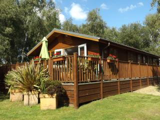 Birch Lodge, Warmwell Holiday Park, Dorset, near Weymouth