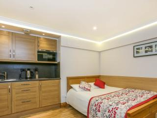 Luxury Studio in Bloomsbury LGF