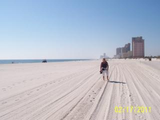 Awesome BEACH Getaway - Gulf Shores Secret