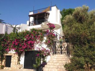 Villa Angora