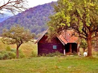 • Cozo Fantu • log cabin Carpathian Mountains • cottage rental Transylvania
