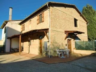 galloshortlets, Volterra