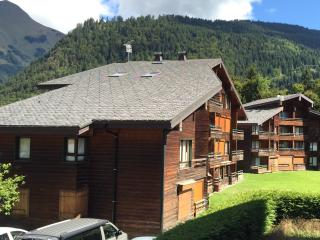 Spacious, south facing ground floor apartment., Morzine