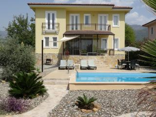 Amber Villa with private swimming pool and garden