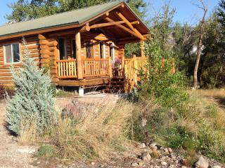 Log Cabin along Jesse Creek in Salmon, Idaho