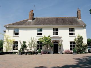 B20 - Western House, Newton Abbot