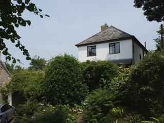 P293 - Camellia House, Boscastle