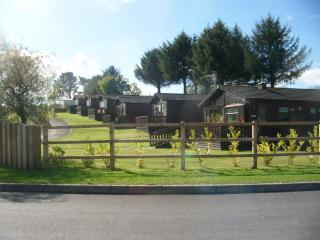 Saundersfoot Pine Lodges 1