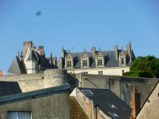 Appart 2 pieces Amboise hypercentre vue chateau