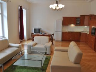 Beautiful & Charming 2 bedroom flat best location, Prague