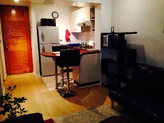 Furnished Apartment Santiago downtown