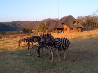 Bambelela Wildlife Care and Guest Farm, Bela Bela