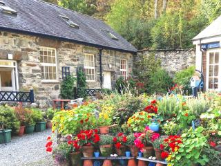 Wonderful Country Cottage Snowdonia National Park, Penmaenpool