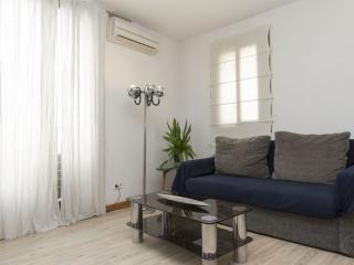 Pintor IV apartment in El Borne with WiFi, airconditioning, dakterras & balkon., Barcelona