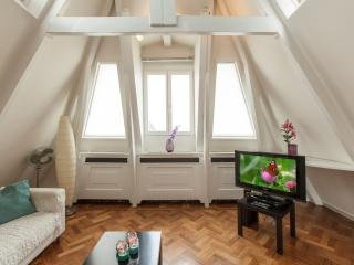Spacious Museum View Penthouse apartment in De Pijp Noord with WiFi.