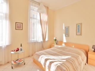 Tyrsova Modern apartment in Nove Mesto with WiFi & lift.