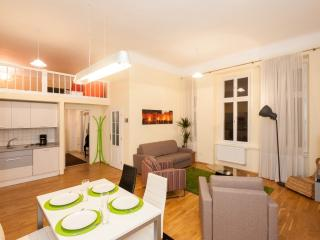 Hybernska 9 apartment in Nove Mesto with WiFi & lift.