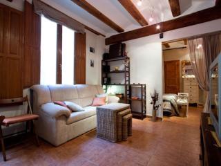 Carme Viveros apartment in El Carmen with airconditioning., Valencia