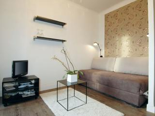 Modern Serres apartment in 15ème - Seine with WiFi & lift., Parijs