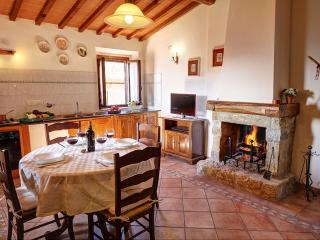 Chianti Sieci III apartment in Chianti Sieci with WiFi, private garden & lift.