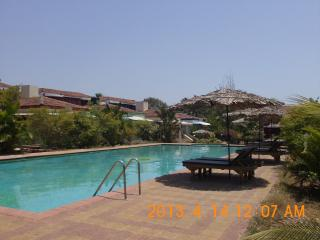 Olympic size Swimming Pool with Sun Loungers & Coco Hut Umbrellas