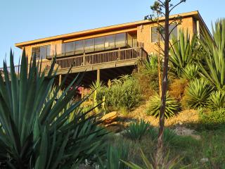 Starfish Surf Apartment, Jeffreys Bay