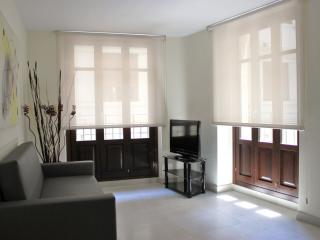 Negrito Art 1 apartment in El Carmen with WiFi, airconditioning, balkon & lift.