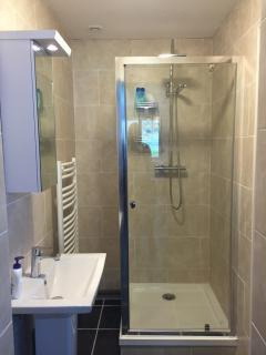 ensuite shower room with heated electric towel rail ( can also be accessed from living area)